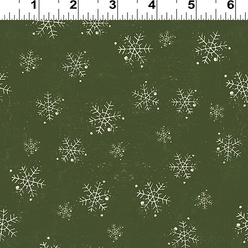 Winter Playground Green Snowflake