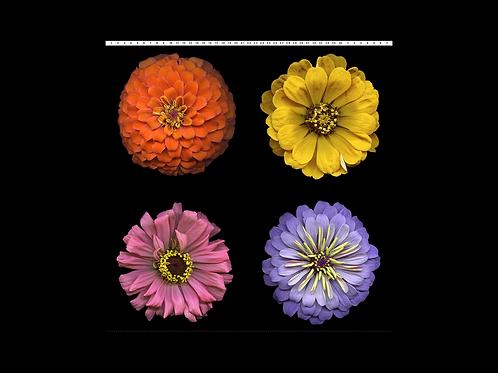 Flower Power Panel