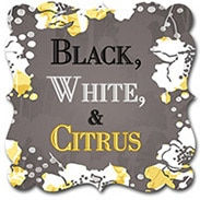 black white citrus_icon__49317.original.