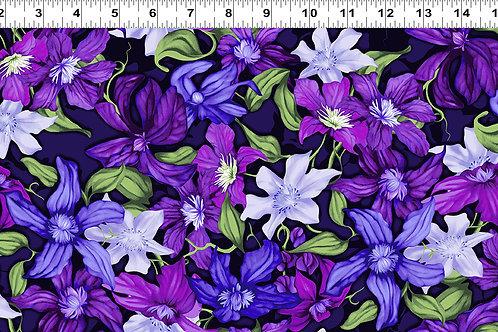 Trellis Packed Clematis Purple