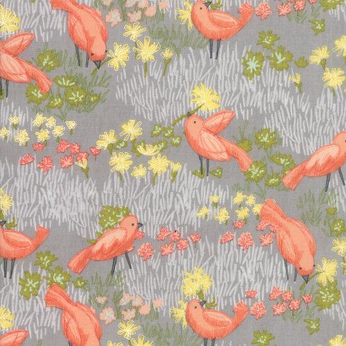 Pebble Birds