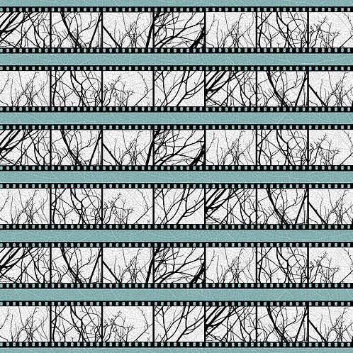 Black & White Film Strip