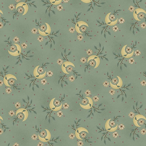 Parlor Pretties - Aqua 108 Wide Back