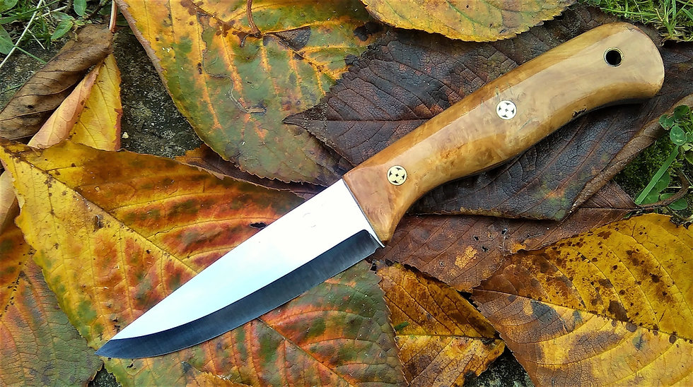 Bushcraft knife with Apple Burr Handle