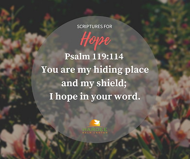 Phsalm 119:114.png