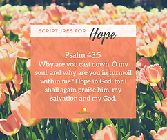 Psalm 43:5.png