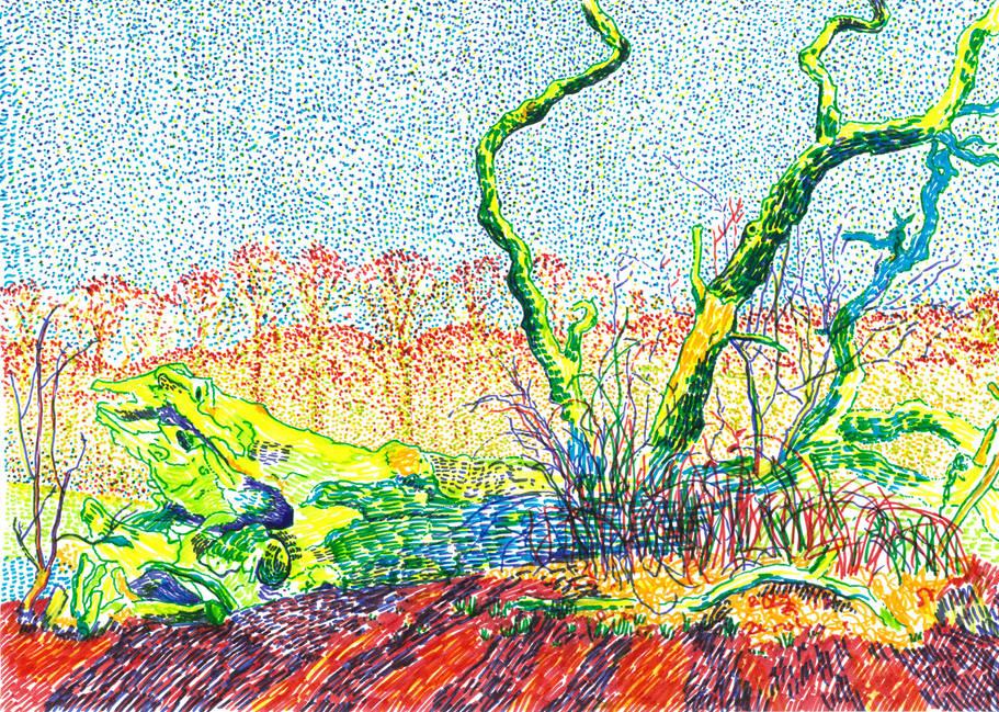 Fallen Tree Hamstead Heath,29.7x42cm, Fe