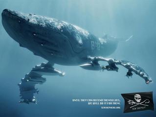 Les campagnes choc de Sea Shepherd