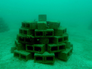 Récifs artificiels sur les côtes méditerranéennes