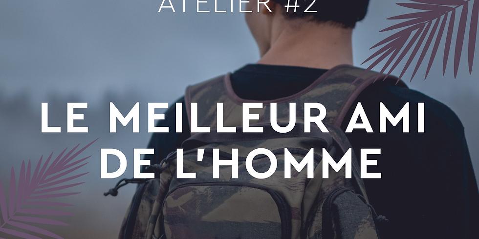 ATELIER #2 - LE MEILLEUR AMI DE L'HOMME