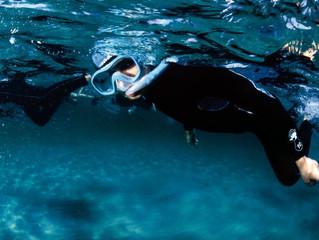 Les sentiers marins de Méditerranée, sortie pédagogique pour tous