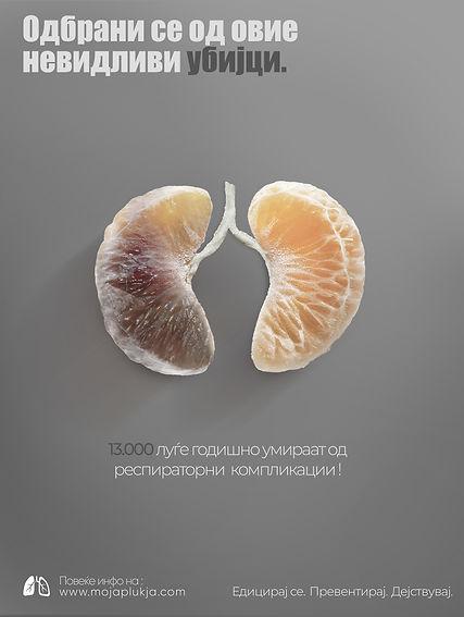 Campaign-mojaplukja_lungs.jpg