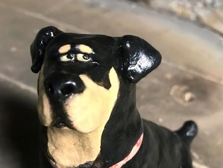 Ellie the Rottweiler