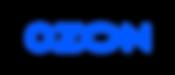 logo_Ozon_new1-770x330.png