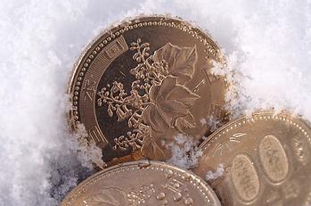 paulownia-coins-japan