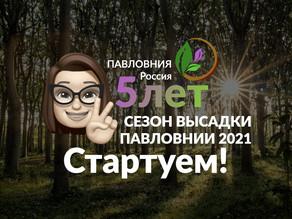 ОТКРЫВАЕМ Сезон высадки Павловнии 2021