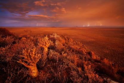 Karoo Storm | Hougaard Malan | Limited Edition (8)