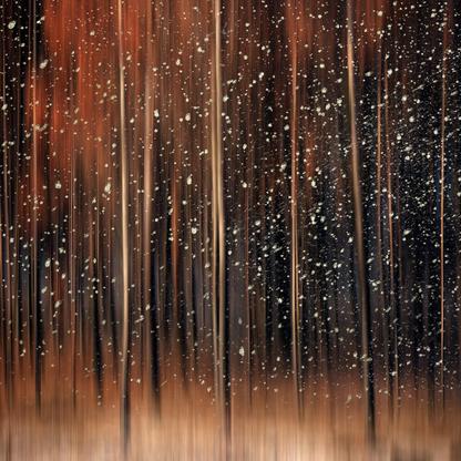 Fantasy Forest | Samantha Lee Osner