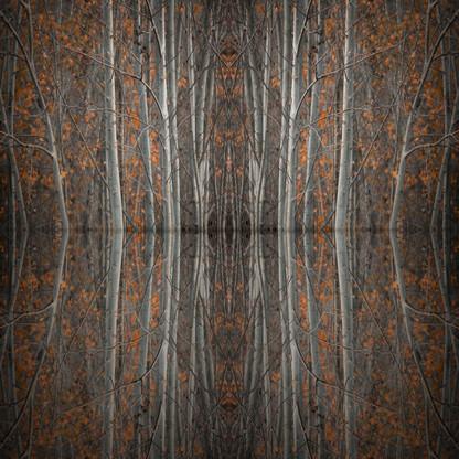 Mirror Island No.4 | Martin Osner | Ltd Ed (50)