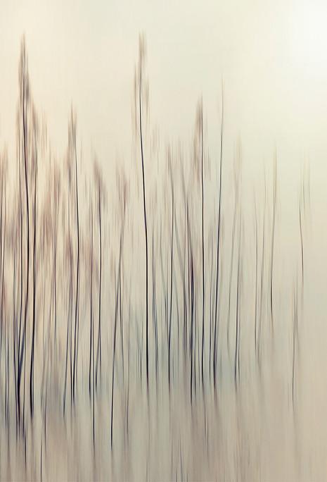 PANACHE #1 by Samantha Lee Osner