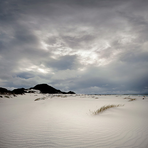 PALE SANDS by Samantha Lee Osner