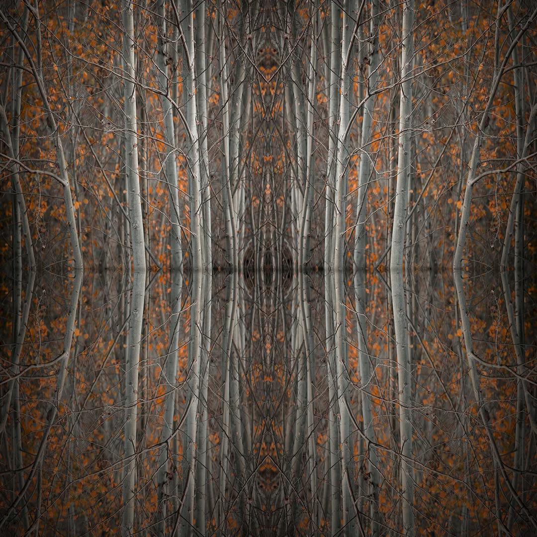 Mirror Island No.4 | Edition 50 | Martin Osner