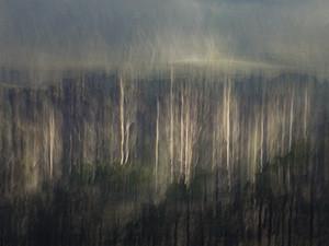 Creation | Martin Osner