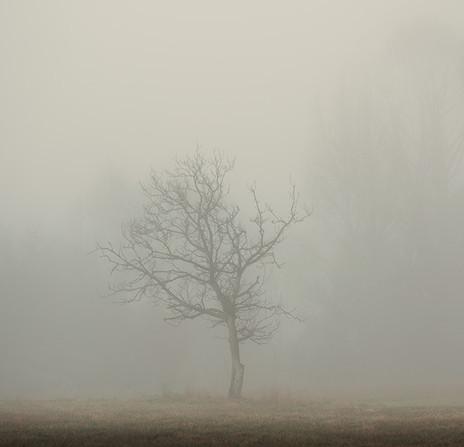 SERAPHIC | ARCANE by Martin Osner