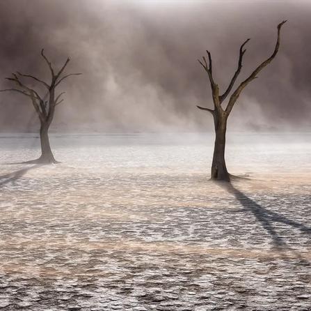 East Wind | Hougaard Malan