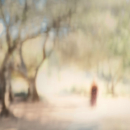 Daydreams VII | Samantha Lee Osner | Ltd Ed