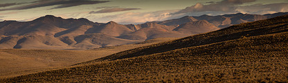MAJESTIC KAROO by Martin Osner