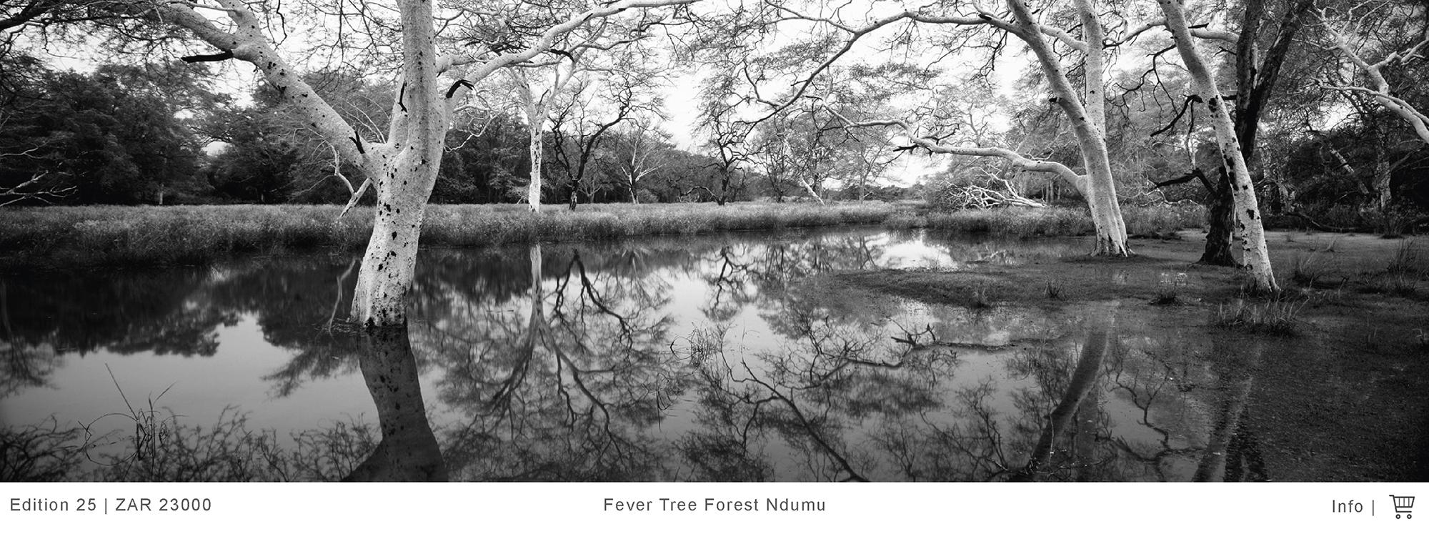 Landscape Photography I Koos Van Der Lende