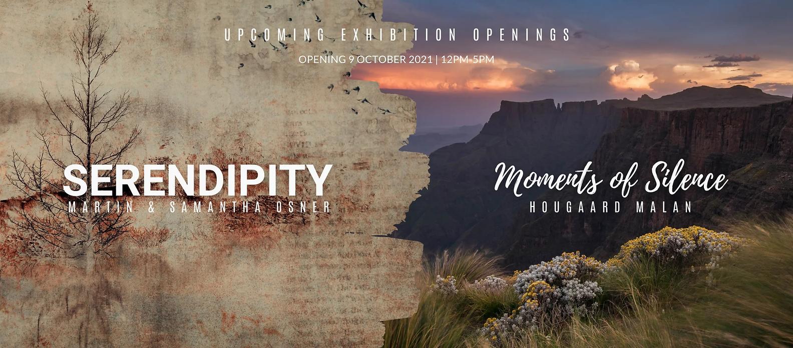 Copy of Copy of Copy of Copy of online art photography gallery.webp