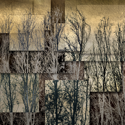 Naive | Martin Osner