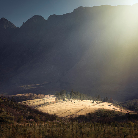 SERAPHIC | FIRST LIGHT by Martin Osner