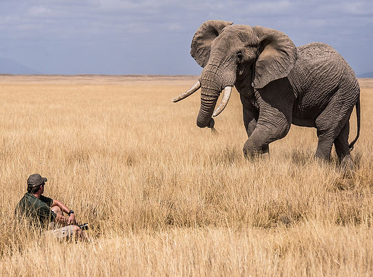 Wildlife photographer Greg du Toit sits quietly in the grass while an African elephant moves in close to investigate.