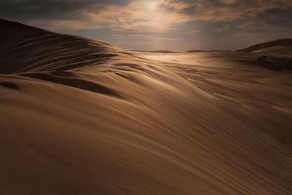 DESERT HARMONY #8 by Martin Osner