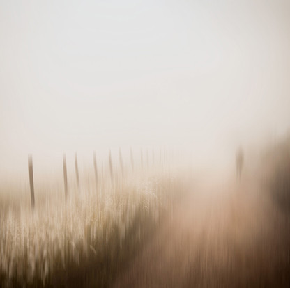 COUNTRYSIDE PHANTASY by Samantha Lee Osner