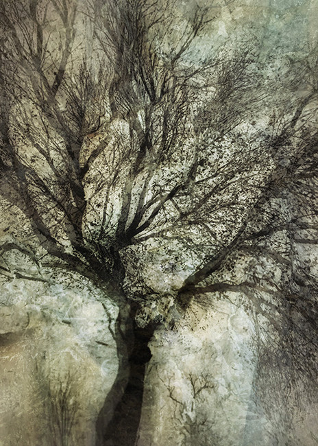 EMINENCE #1 by Martin Osner