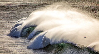 WAVE DANCER by Peter Corbett
