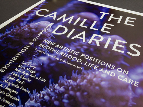 THE CAMILLE DIARIES