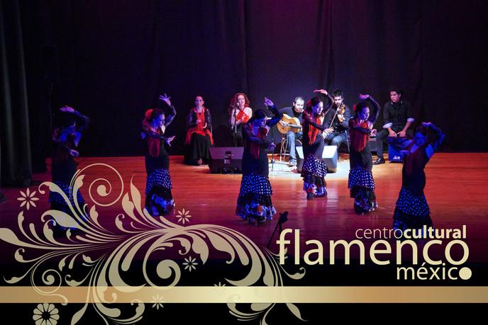 Gala_2013 flamenco méxico