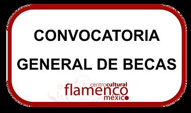 beca flamenco, beca baile