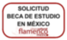 SOLICITUD BECA MEX.png