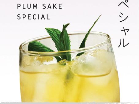 [DARLING PARK] japanese plum sake special event (~ 30th, April)