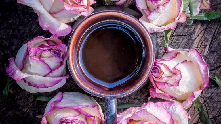 Cérémonie du cacao et de la Rose