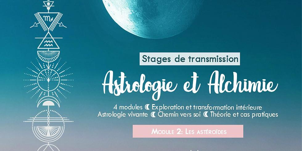 Stage de transmission: Astrologie et Alchimie / Les astéroïdes