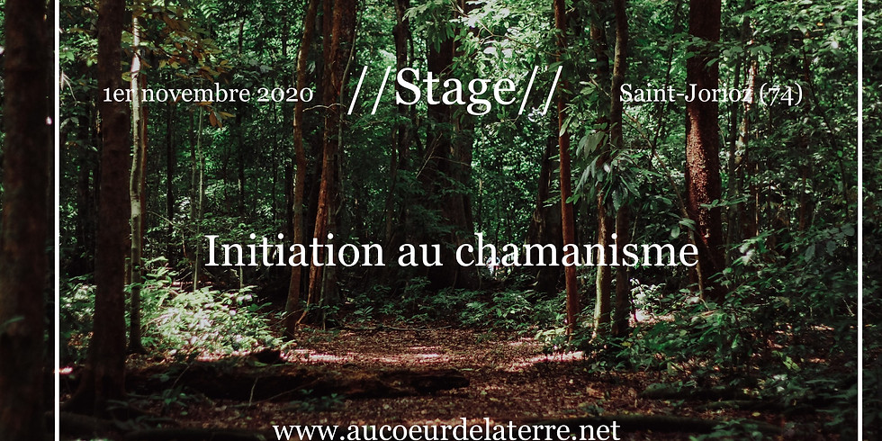 Stage: Initiation au chamanisme