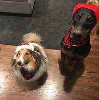 colin and kramer wear hats    Chicago SEO Lyfe team