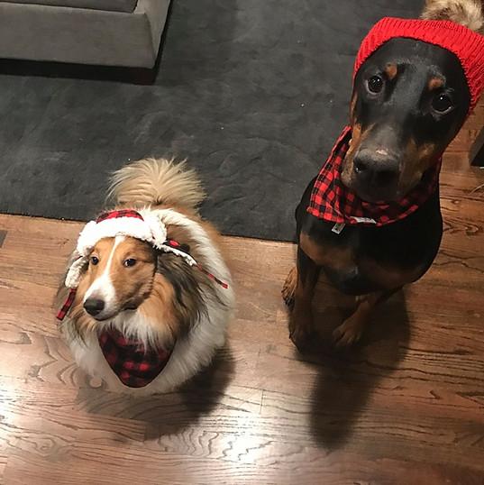 colin and kramer wear hats |  Chicago SEO Lyfe team